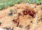 Pastor's grave dug up, burned