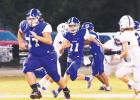 Wortham survives early gaffes to win going away, 60-35